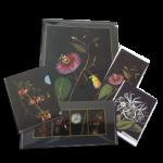 Delany-folder-pack-2